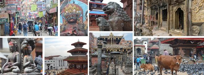facebook-nepal-thamel-pashu